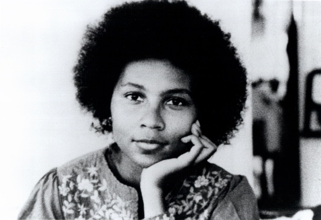 Bell Hooks Beyonce
